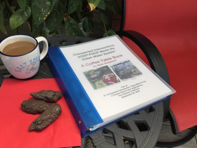 Soap-Poop Meets the Ottawa Water System, A Coffee table book by Beth Shepherd